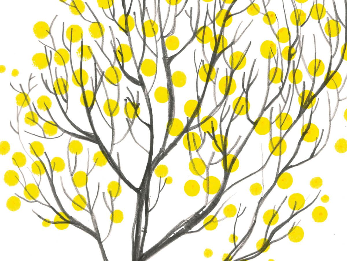 Dotty-Tree-Fiona-Woodcock